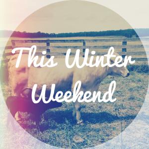 This Winter Weekend